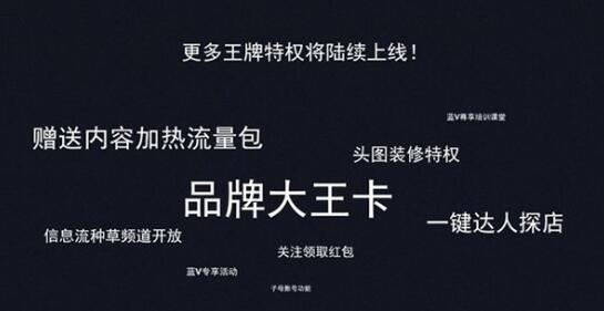 百家号蓝V特权